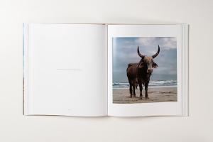 From Animal Farm by Daniel Naudé