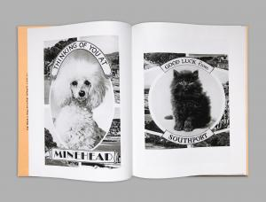 From Animal Greetings from the UK by Alberto Vieceli