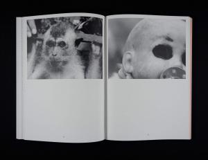 From Ape Culture by Anselm Franke & Hila Peleg