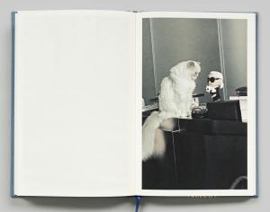 From Choupette by Karl Lagerfeld