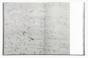 From Des oiseaux by Byung-Hun Min