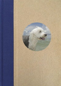 Floridadogs – Cover