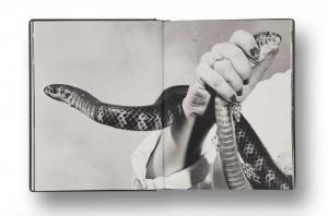 From Girl Plays with Snake by Clare Strand