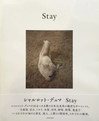 Stay – Cover