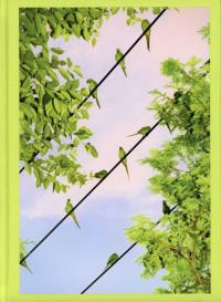 Tokyo Parrots – Cover