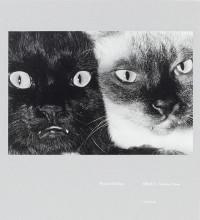 Wonderful Days – Cover